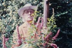 37А.Д. Тихомиров на даче. Свистуха. 1988