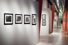 А.Д.Тихомиров. Выставка. Еврейский музей. М. 2013 (1)